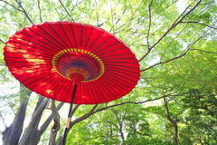 Japanese red umbrella Stock Image