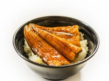 Japanese Rice Bowl Topping with Grilled Eel with Teriyaki Sauce on white table stock images