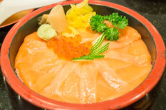 Japanese rice box with salmon sashimi Stock Image