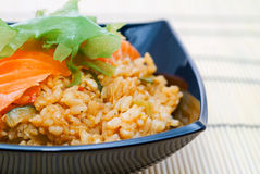 Japanese rice and salmon. Royalty Free Stock Image