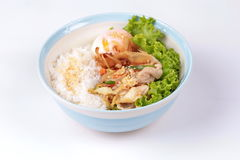 Japanese rice topped boil eggs and fried pork. Japanese cuisine , Rice with soft boil eggs and fried pork topped white sesame and slicrd dried mackarel in royalty free stock photography