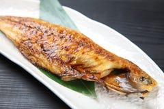 Japanese roasted mackerel Royalty Free Stock Photo