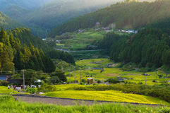 Japanese rural landscape with rice field terraces. Among mountain forest. Youtsuya countryside view. Aichi prefecture, Japan stock images