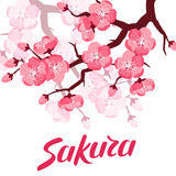 Japanese sakura background with stylized flowers. Image for holiday invitations, greeting cards, posters Stock Photo
