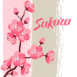 Japanese sakura background with stylized flowers. Image for holiday invitations, greeting cards, posters Stock Photography