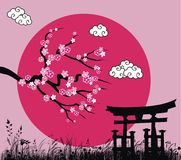 Japanese sakura blossom and tori gate Stock Photography