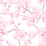 Japanese sakura seamless pattern with stylized flowers. Background made without clipping mask. Easy to use for backdrop Stock Image