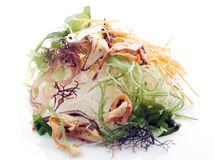 Japanese salad Stock Images