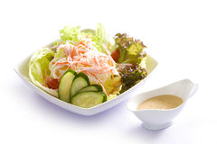 Japanese Salmon Salad Royalty Free Stock Images