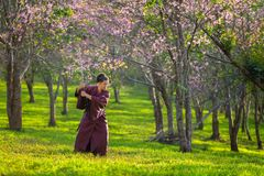 The Japanese samurai are gripping the sword, preparing to fight royalty free stock photography