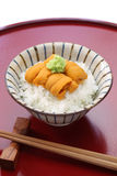 Japanese sea urchin roe on rice Royalty Free Stock Photo