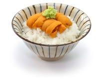 Japanese sea urchin roe on rice Royalty Free Stock Photos