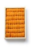 Japanese sea urchin Stock Image