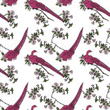 Japanese seamless pattern with sakura and birds Royalty Free Stock Photography