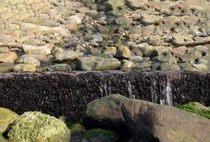 Japanese seaside small waterfall stock images