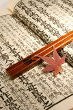 Japanese set. Old Japanese book from meiji period with chopsticks and japanese maple leaf royalty free stock images