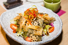 Japanese shake kawa salad with dried salmon skin and lotus roots.  Stock Photography