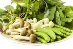 Japanese shimeji mushroom, Spring peas and Chinese spinach Stock Photo