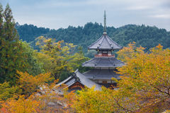 Japanese Shinto shrine in Autumn royalty free stock photography