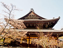 Japanese Shinto shrine with cherry blossom 2 Stock Photography