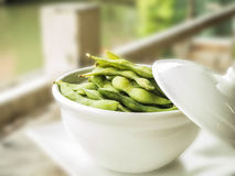 Japanese soya. Vitamins and minerals that are beneficial to the body Stock Photography