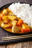 Japanese spicy curry and white rice close-up on a plate. vertica Stock Photo