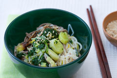 Japanese Spinach Leek Salad Royalty Free Stock Photo
