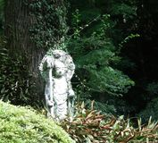 A Japanese statue of a Buddha in a forest. A Japanese stone statue of a Buddha surrounded by bushes and trees. The background is green. Some vines cover the Stock Photo