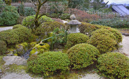Japanese Stone Lantern. View of Japanese stone lantern and mossy stone basin surrounded by evergreen privet bushes, Chion-in temple complex, Kyoto, Japan Stock Image