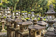 Japanese Stone Lanterns. Nara, Japan. Japanese lanterns at Kasuga-taisha Shrine Stock Photos
