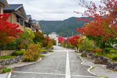 Japanese street of Kyoto. During the autumn season Stock Images