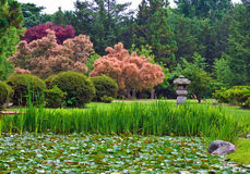 Japanese Stroll Garden. View of landscape of a Japanese stroll garden with lily pond stock photo