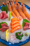 Japanese style assorted sashimi dish Royalty Free Stock Image