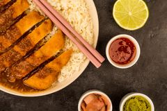 Japanese Style Breaded Chicken Katsu Curry With Boiled Sushi Ric. E On A Black Tiled Background Stock Images