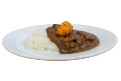 Japanese style curry rice isolated Royalty Free Stock Photo