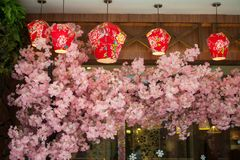 Japanese style decoration of restaurant. Japanese style decoration of a restaurant ,lanterns, cherry blossoms royalty free stock image
