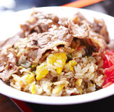 Japanese style fried rice Stock Image