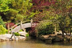Japanese Style Garden with Arch Bridge. Arch wooden over a pond at a Japanese style botanical garden in Missouri Stock Photography
