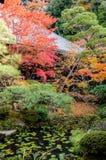 Japanese style garden in autumn Stock Photos