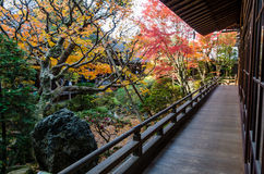 Japanese style garden in autumn Royalty Free Stock Photos