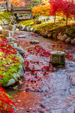 Japanese style garden Stock Images