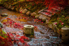 Japanese style garden Royalty Free Stock Photo