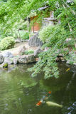 Japanese style garden Stock Photo