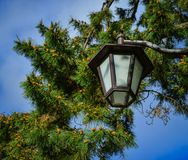 Japanese-style lamp at the park royalty free stock images