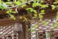 Japanese style lantern Stock Images