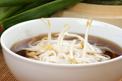 Japanese style noodle soup Stock Photography