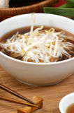 Japanese style noodle soup Stock Image