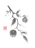 Japanese style original sumi-e apple branch ink painting. Stock Photo