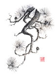 Japanese style original sumi-e pine branch ink painting. Royalty Free Stock Images
