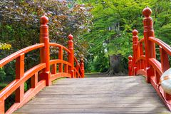 Japanese style red humped bridge leading to garden of  trees. Royalty Free Stock Photography